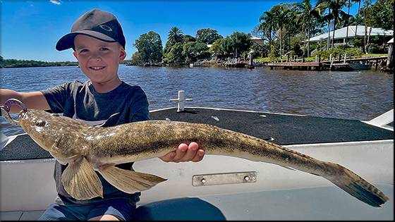 The Noosa Fishing Report. Friday May 17, 2019.